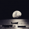 Nermine Memmedova – Ay Işığında
